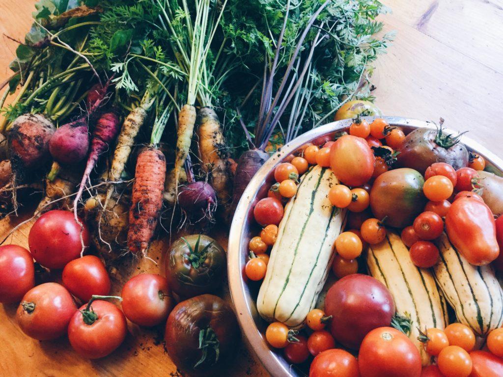 my garden veggies