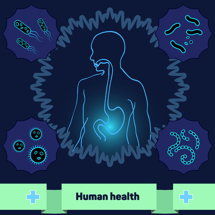 Why Restoring your Gut Health Matters
