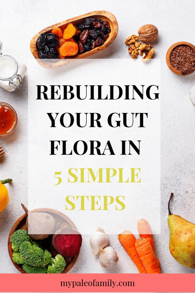 Rebuilding your gut flora